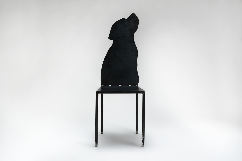 dsc00424-labrador