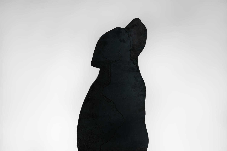 dsc00425-labrador